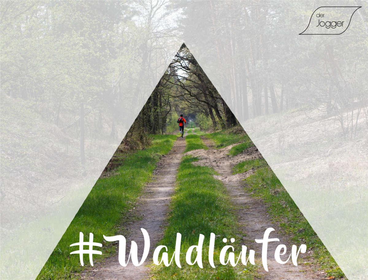 Läufer im Wald in der Natur mit #Waldläufer