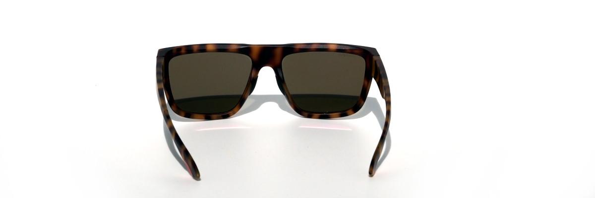 Smith The Comeback mit polarisierten braunen Gläsern